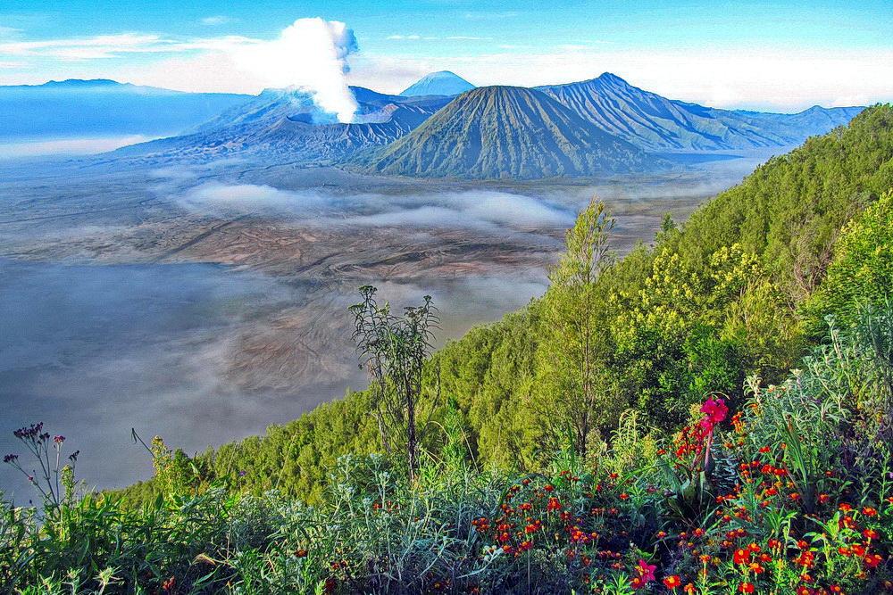 Національний парк «Бромо-Тенггер-Семеру» на острові Ява, Індонезія