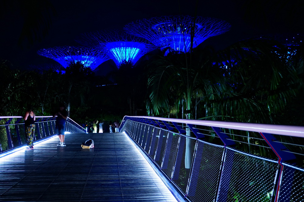 Нічний Сінгапур: Gardens of the Bay
