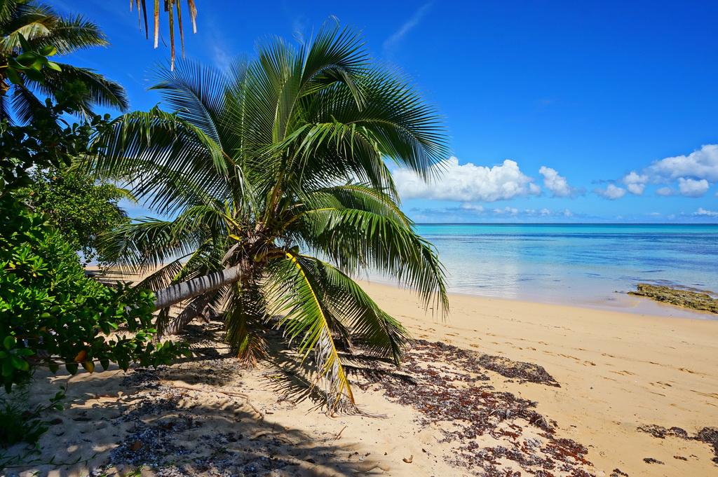 Острів 'Атата (Тонга)